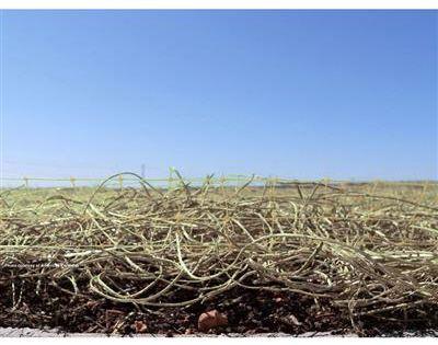 Curlex 1 Single Layer Natural Erosion Control Top Soil Landscape Fabric