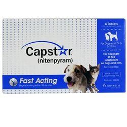 Capstar For Cats Dogs Flea Pill For Pets Medi Vet Flea Treatment Fleas Cat Fleas