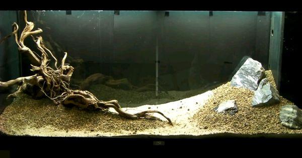 Aquascaping Drift Wood And Rock Slope Aquarium Ideas Pinterest Aquascaping Aquariums