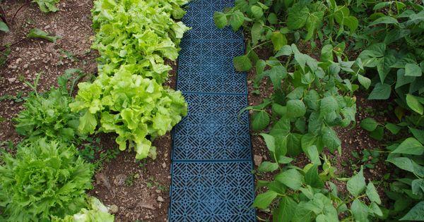 Des Caillebotis Modulables Verts Pour Un Joli Potager Pratique Jardinage Malin Faire Un Jardin Caillebotis Jardinage