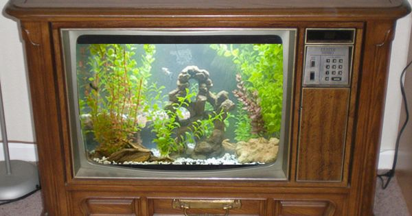 Convert an old tv into an awesome fish tank with these for Build your own fish tank
