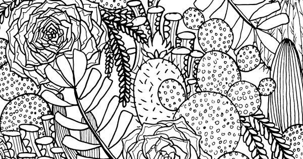 Alisa Burke Coloring Page Succulent
