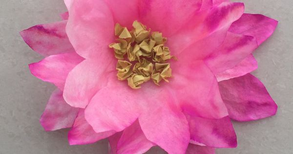 Easy Lotus Flower Craft For Kids South Asian Educational
