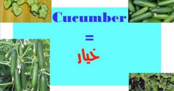 Vegetables الخضروات Via Youtube Arabic Lessons Youtube Songs