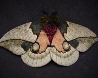 Pin By Gloria Gigi On Butterflies And Moths Colorful Moths Moth Fiber Art