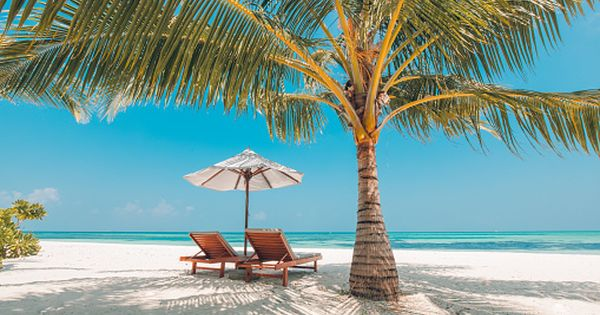 Vacation In Tropical Countries Beach Chairs Umbrella And Palm Trees Beach Background Beach Landscape Tropical Landscape Design