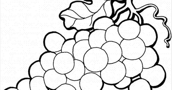 Grapes Colouring Pages - Google Search
