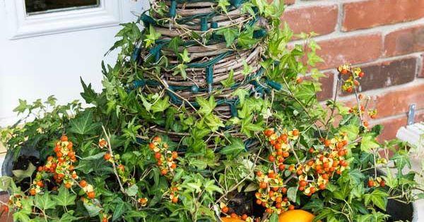 DIY Galvanized Wash Tub Planters | Pinterest | Planters, Fall porches ...