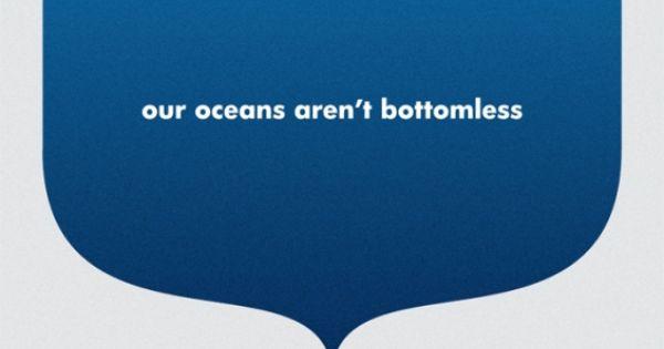 overfishing sydney