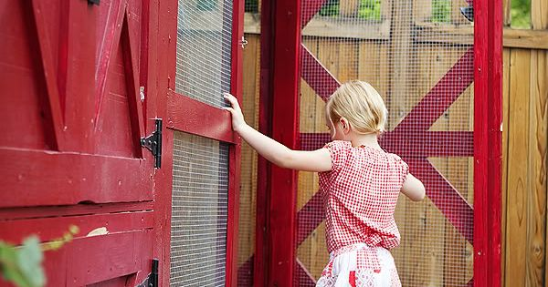 amazing chicken coop, love the doors and colors