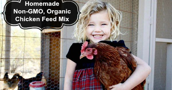 If you are raising backyard chickens, you may have read the contents