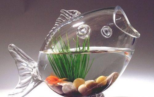 Fish shaped glass fish bowl aquarium small hand blown for Small glass fish bowls