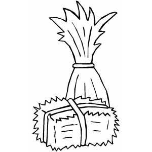 Cornstalk And Hay Printable Coloring Page Free To Download And