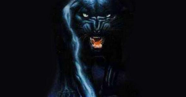Black Panther 3d And Cg Wallpaper Id 82220 Desktop Nexus Abstract Black Panther Hd Wallpaper Black Panther Animal Wallpaper