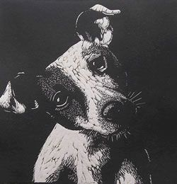 Linoprints Domestic Animals Dogs Cats Horses Cows Linocut Prints Lino Print Artists Linocut Printmaking