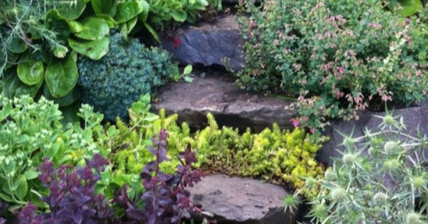 Stone Steps Thru the Garden