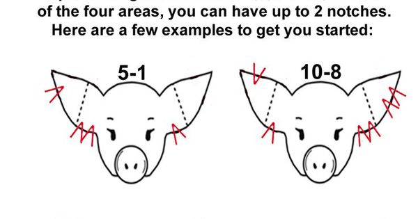 pig ear notching ear notch diagram homestead pigs hogs pinterest pig ears. Black Bedroom Furniture Sets. Home Design Ideas