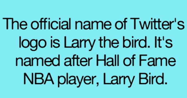 The official name of twitter s logo is larry the bird it s name after