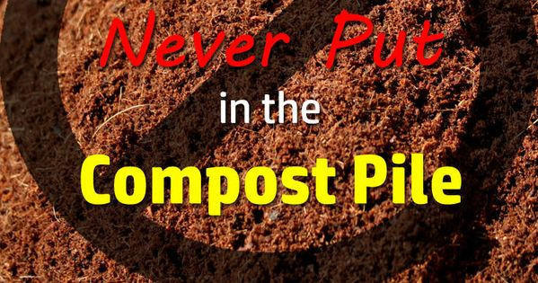 13 things you should never put in the compost pile composting gardens and garden ideas. Black Bedroom Furniture Sets. Home Design Ideas