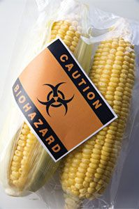 Fda Documents Revealed That The Agency S Own Scientists Expressed Doubts About The Gm Food Labeling Policy When I
