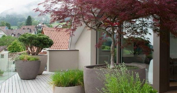 inspirierende terrassengestaltung elegant pflanzen baum ideen rund ums haus pinterest. Black Bedroom Furniture Sets. Home Design Ideas