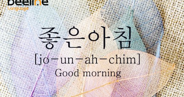 Translation Of Good Morning In Korean : How to say good morning in korean 한국어 pinterest