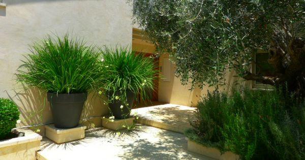 Decoraci n con macetas grandes plantas ideas para - Diseno de jardines modernos ...