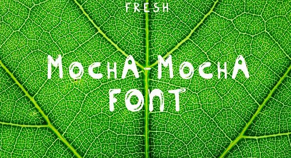 New Fresh MOCHA font by Life For Photo