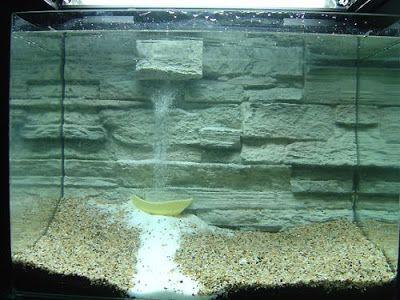 cascade de bulles aquascape fish