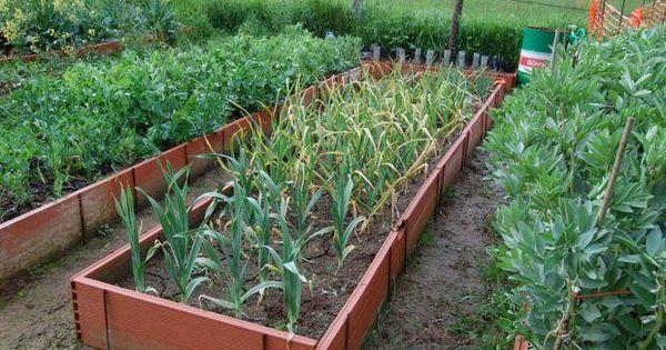 9 formas diferentes de cultivar patatas for Hacer un huerto en el jardin