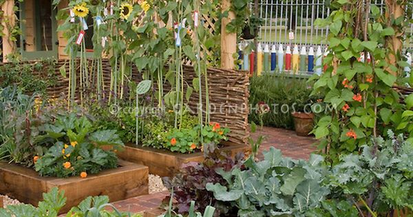 Food Vegetable Garden Raised Beds Sunflowers Trellis