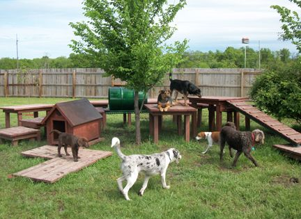 Dog backyard playground sweet dreams doghouse home i for Jim s dog house