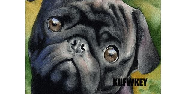 5d Diamond Painting Black Pug Close Up Painting Kit In 2020