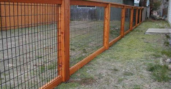 Cheap Fence Ideas | Inexpensive Fence Ideas become the ...