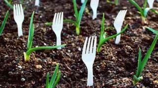 23 Astuces Ingenieuses Pour Vous Simplifier Le Jardinage Jardinage Conseils De Jardinage Et Astuces Pour Nettoyer
