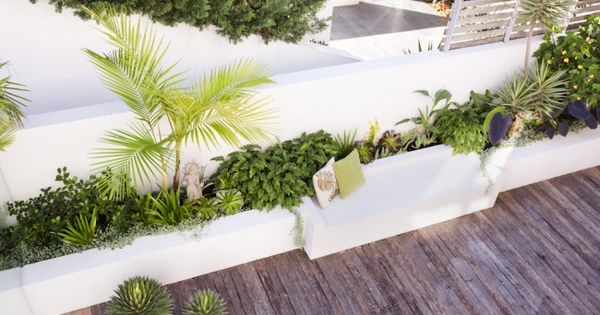 Am nagement ext rieur un jardin design par pepo botanic for Amenagement jardin humide
