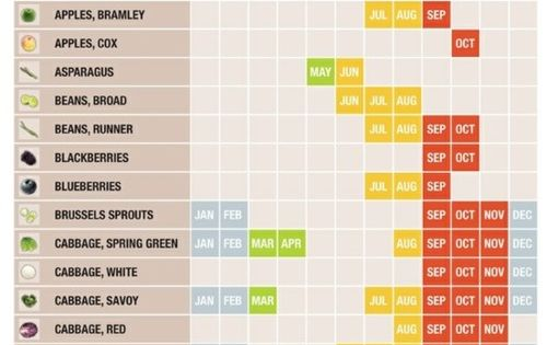 Eat Seasonably Calendar: Fruits and Vegetables. This is a great cheat sheet.