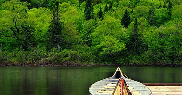 a canoe like that to paddle down a peaceful river. :)