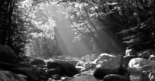 Landscape Stones Mountain White Smoky Water Travel Stream Forest River Mountains Smokey Trail Black Tree Black And White Tree Black And White Mountain Pictures