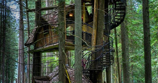 Not much is known about this three story magical tree house other