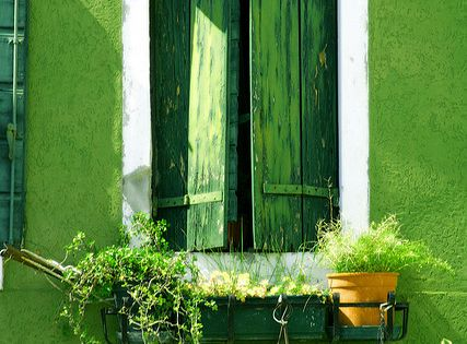 Green wall white frame green shutters and window boxes