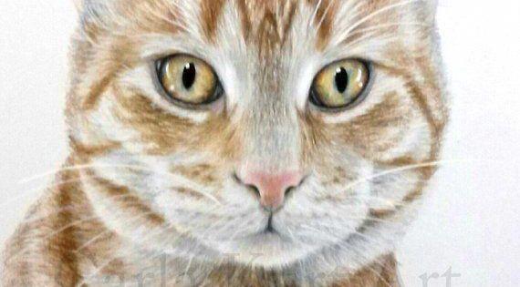 Cats Craigslist Catsearsarehot Info 2239845682 Pet Portraits Custom Pet Portraits Animals