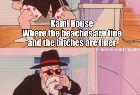 Can you speak up? I'm not wearing any pants-master roshi, dbz abridged XD | YouTube things :D ...