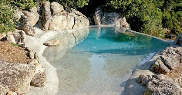Piscina bio design work in progress pinterest for Piscinas bio naturales