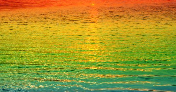La naturaleza tiene más de un arco iris. //// Nature has more