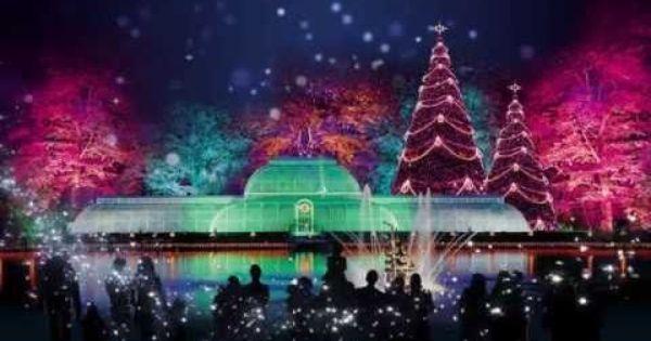 Christmas At Kew 2015 Christmas In Australia Kew London Tourist