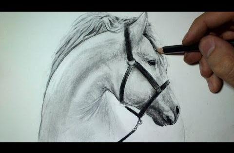 Comment dessiner une t te de cheval tutoriel youtube - Dessin facile de cheval ...