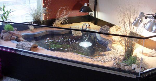 turtle habitat indoor pond turtle cool pinterest schildkr ten. Black Bedroom Furniture Sets. Home Design Ideas