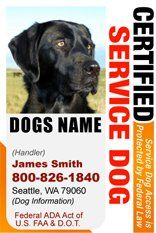 Personalize Dean And Tyler Certified Service Dog Id Badge 1