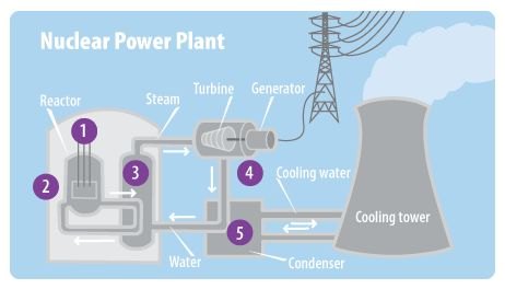 This Diagram Shows The Major Parts Of A Nuclear Power